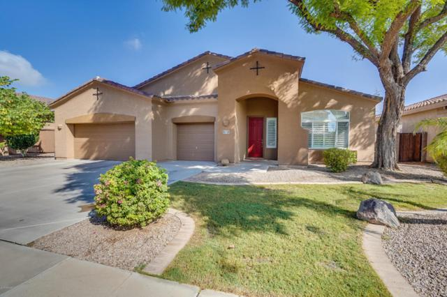 930 E Lynx Way, Chandler, AZ 85249 (MLS #5823012) :: Kelly Cook Real Estate Group