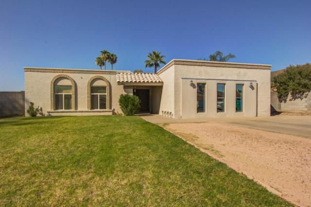 3360 E Florian Avenue, Mesa, AZ 85204 (MLS #5823016) :: Team Wilson Real Estate