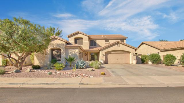 2244 E La Costa Place, Chandler, AZ 85249 (MLS #5823019) :: Kelly Cook Real Estate Group