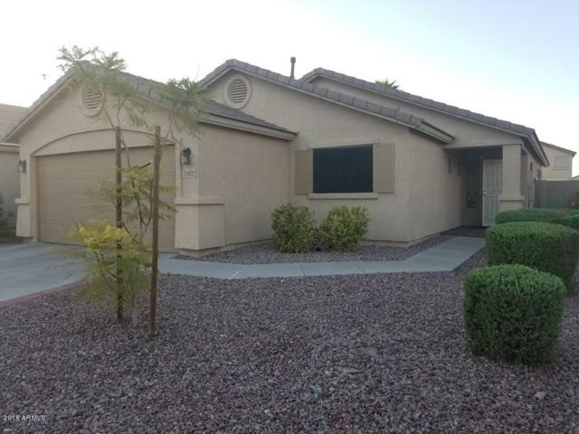 44052 W Mccord Drive, Maricopa, AZ 85138 (MLS #5823023) :: Keller Williams Legacy One Realty