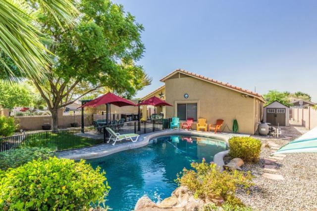 7016 W Cavalier Drive, Glendale, AZ 85303 (MLS #5823030) :: Kelly Cook Real Estate Group
