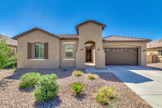 22277 E Duncan Court, Queen Creek, AZ 85142 (MLS #5823039) :: Team Wilson Real Estate