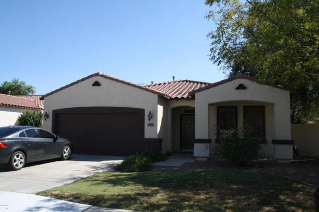 1411 E Azalea Drive, Gilbert, AZ 85298 (MLS #5823049) :: The W Group