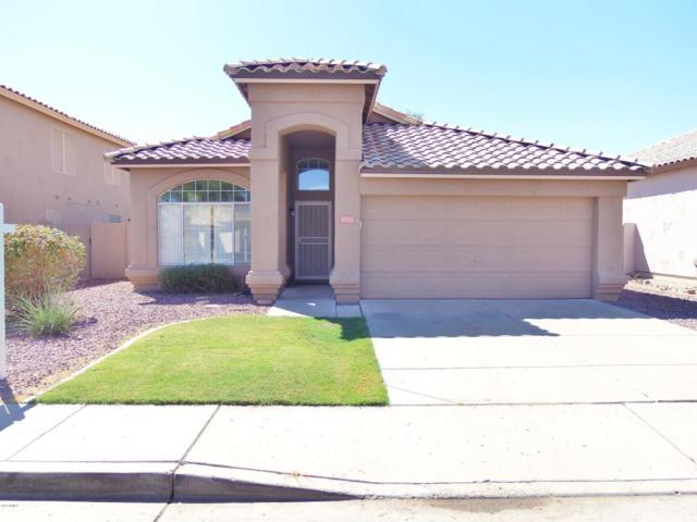 6935 W Via Del Sol Drive, Glendale, AZ 85310 (MLS #5823054) :: The Laughton Team