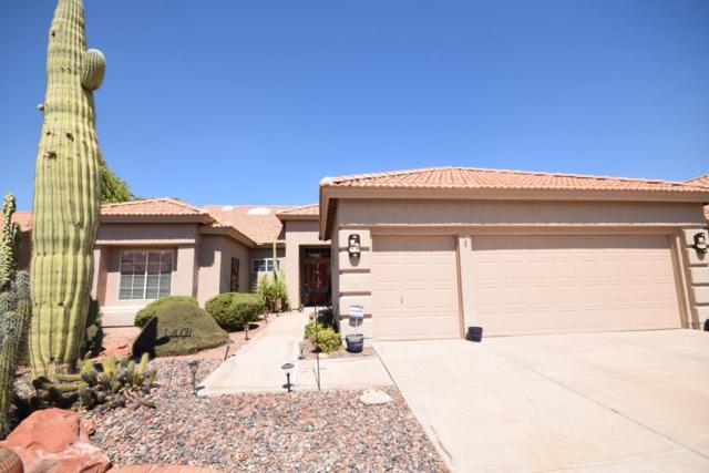 10928 E Spring Creek Road, Sun Lakes, AZ 85248 (MLS #5823055) :: The Laughton Team