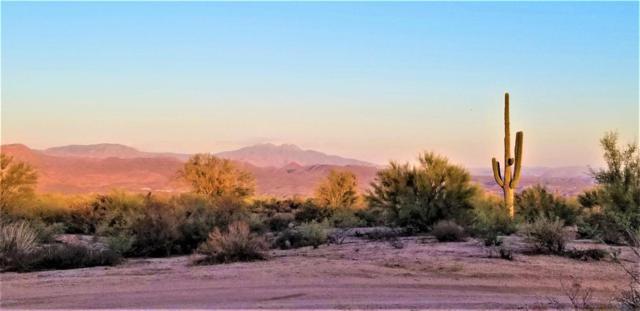 31300 N 156th Street, Scottsdale, AZ 85262 (MLS #5823098) :: Occasio Realty