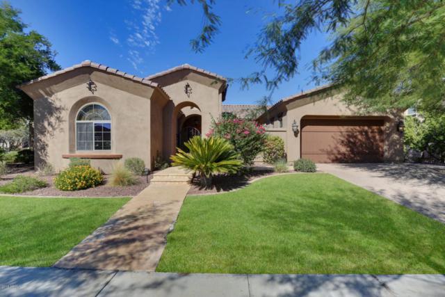 20816 W Lost Creek Drive, Buckeye, AZ 85396 (MLS #5823114) :: The Garcia Group @ My Home Group