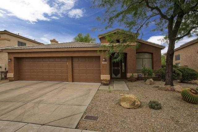 29653 N 48TH Place, Cave Creek, AZ 85331 (MLS #5823139) :: Keller Williams Realty Phoenix