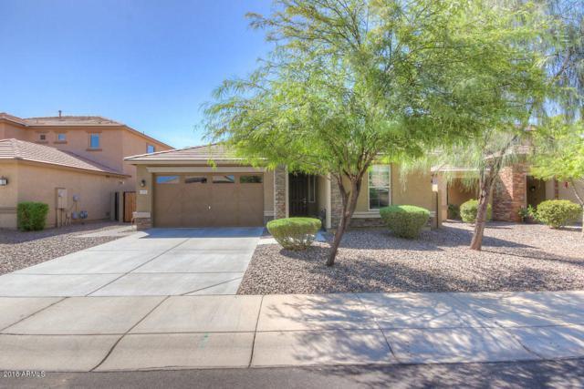 2913 E Meadowview Drive, Gilbert, AZ 85298 (MLS #5823142) :: Team Wilson Real Estate