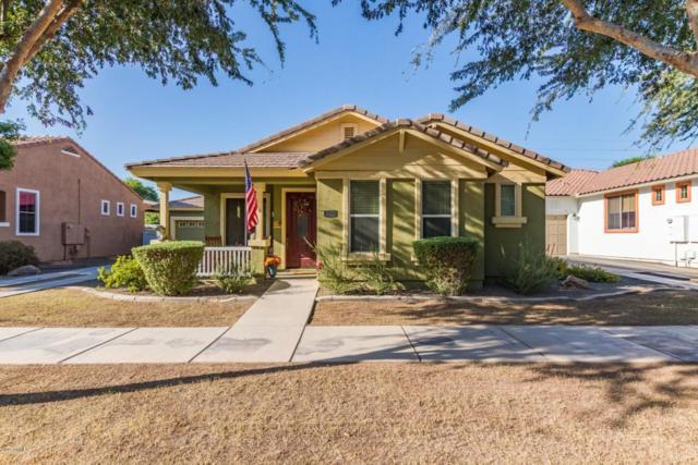 3020 E Camellia Drive, Gilbert, AZ 85296 (MLS #5823153) :: Team Wilson Real Estate