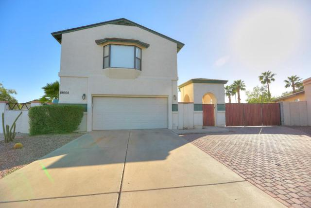 19008 N 43RD Drive, Glendale, AZ 85308 (MLS #5823161) :: The Everest Team at My Home Group