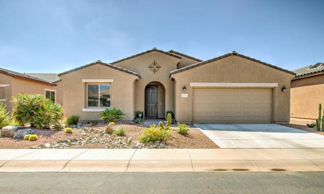 42951 W Sandpiper Drive, Maricopa, AZ 85138 (MLS #5823165) :: Sibbach Team - Realty One Group