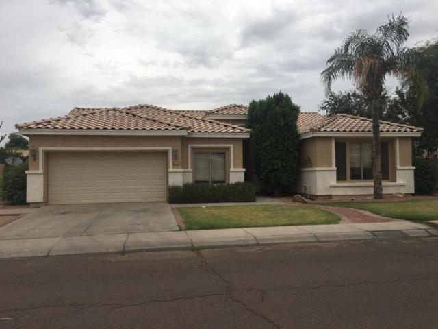 1810 W Falcon Drive, Chandler, AZ 85286 (MLS #5823253) :: The Daniel Montez Real Estate Group