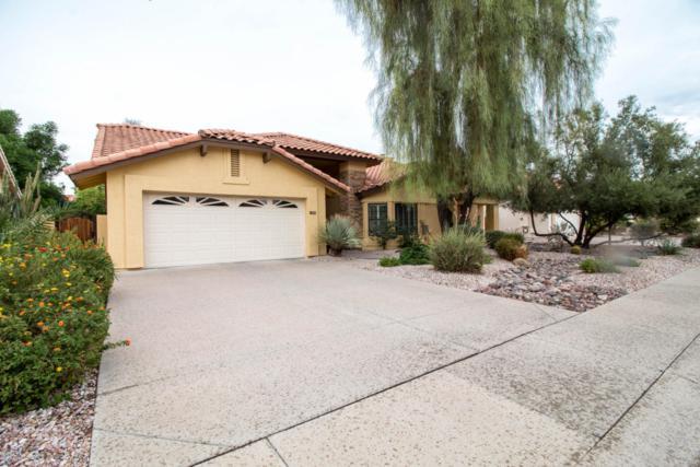 8438 S Kenwood Lane, Tempe, AZ 85284 (MLS #5823299) :: The Wehner Group