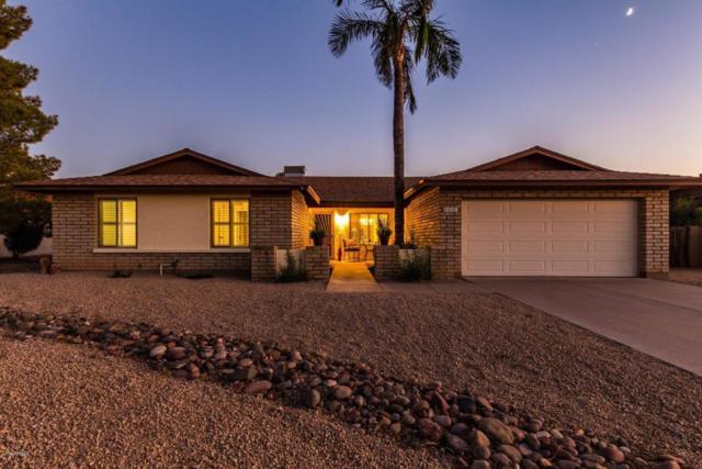 6031 E Evans Drive, Scottsdale, AZ 85254 (MLS #5823303) :: The Wehner Group