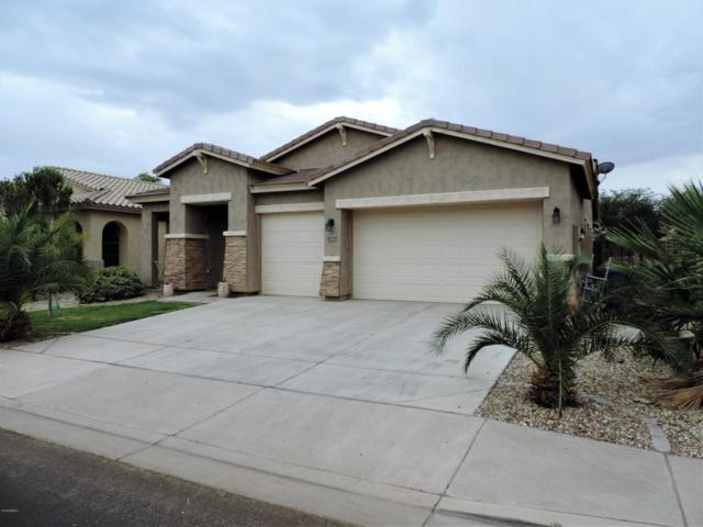 3673 E Palmer Street, Gilbert, AZ 85298 (MLS #5823319) :: The Wehner Group