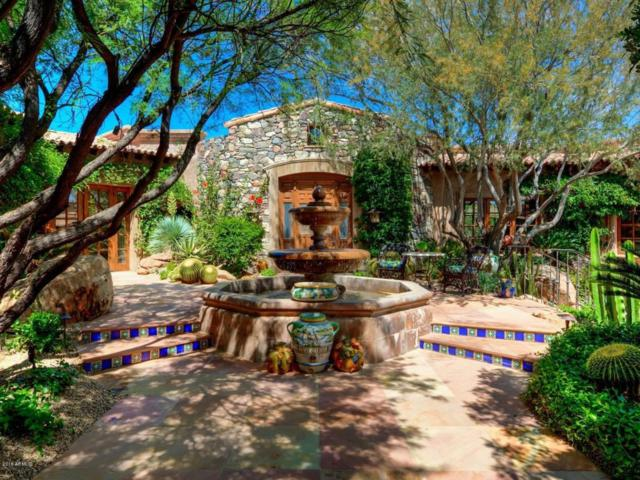 10248 E Venado Trail, Scottsdale, AZ 85262 (MLS #5823345) :: The Kenny Klaus Team