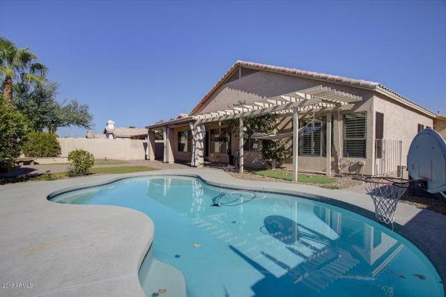 1790 W Hawk Way, Chandler, AZ 85286 (MLS #5823370) :: Yost Realty Group at RE/MAX Casa Grande