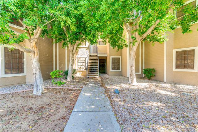 5230 E Brown Road #210, Mesa, AZ 85205 (MLS #5823390) :: The Pete Dijkstra Team