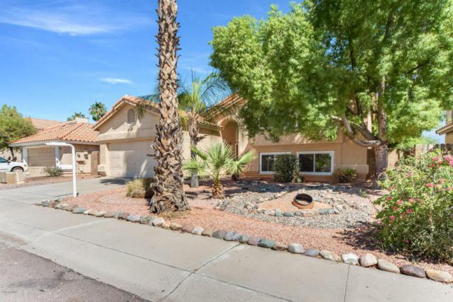 18231 N 46TH Street, Phoenix, AZ 85032 (MLS #5823392) :: The Wehner Group