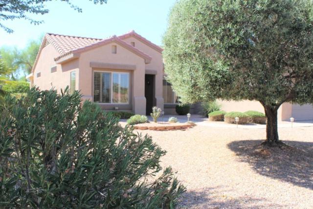 15841 W Rosewood Way, Surprise, AZ 85374 (MLS #5823399) :: The Garcia Group