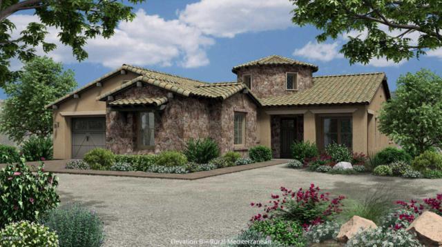 4691 N 206TH Avenue, Buckeye, AZ 85396 (MLS #5823516) :: Occasio Realty