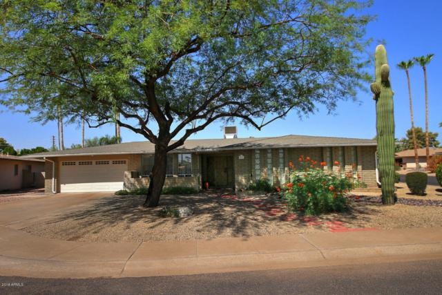 4236 N 86TH Place, Scottsdale, AZ 85251 (MLS #5823523) :: The W Group