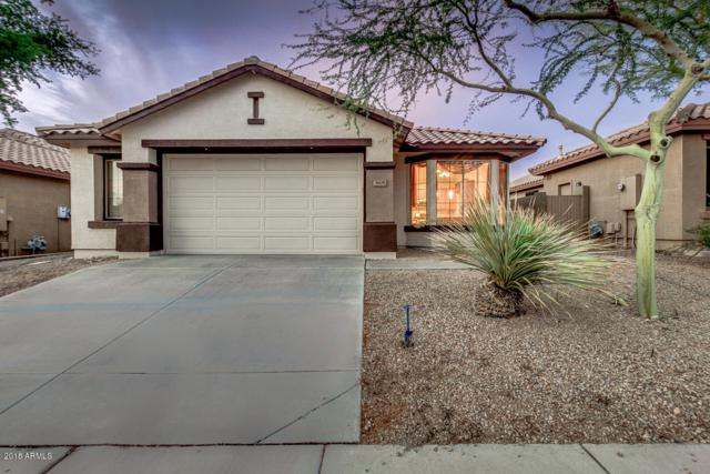 3608 W Denali Drive, Anthem, AZ 85086 (MLS #5823541) :: Riddle Realty
