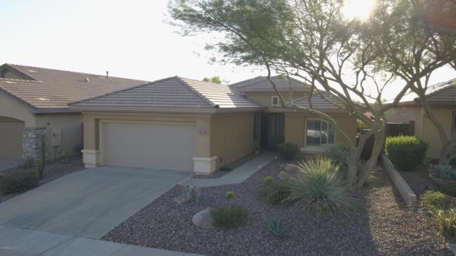 40738 N Noble Hawk Court, Phoenix, AZ 85086 (MLS #5823688) :: The Garcia Group @ My Home Group