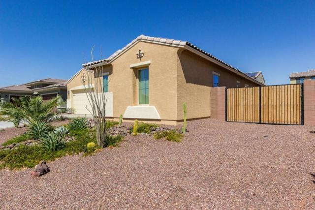 18604 W Williams Street, Goodyear, AZ 85338 (MLS #5823689) :: The AZ Performance Realty Team