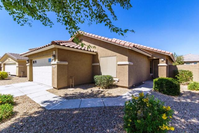 16580 W Tonto Street, Goodyear, AZ 85338 (MLS #5823720) :: The AZ Performance Realty Team