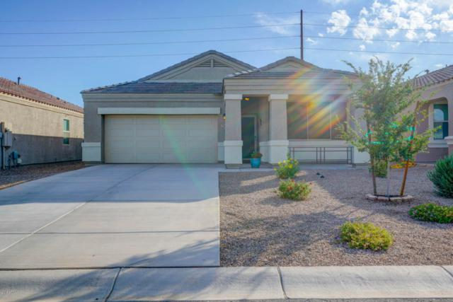29055 N Fire Agate Road, San Tan Valley, AZ 85143 (MLS #5823735) :: The Everest Team at My Home Group