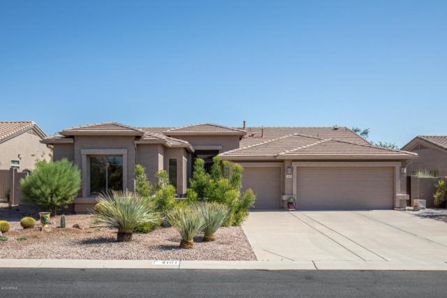 4101 S Prairie Zinnia Drive, Gold Canyon, AZ 85118 (MLS #5823761) :: The W Group