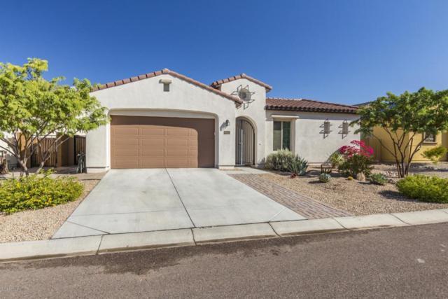 7950 W Whitehorn Trail, Peoria, AZ 85383 (MLS #5823782) :: The Garcia Group @ My Home Group