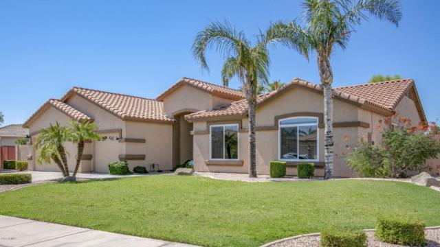 676 S Roanoke Street, Gilbert, AZ 85296 (MLS #5823799) :: The W Group