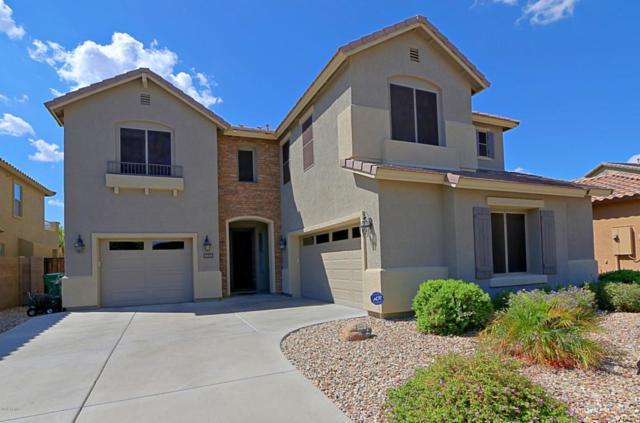 9836 N 181st Avenue, Waddell, AZ 85355 (MLS #5823831) :: Brett Tanner Home Selling Team