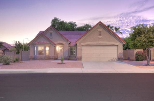6732 S Vernon Drive, Chandler, AZ 85249 (MLS #5823843) :: RE/MAX Excalibur