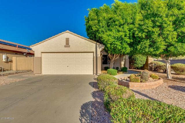 20443 N 81ST Drive, Peoria, AZ 85382 (MLS #5823846) :: The Garcia Group @ My Home Group