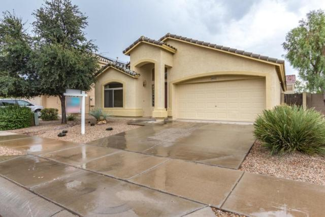 16633 W Polk Street, Goodyear, AZ 85338 (MLS #5823856) :: The AZ Performance Realty Team