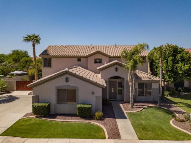 3542 S Cox Court, Chandler, AZ 85248 (MLS #5823859) :: The Everest Team at My Home Group