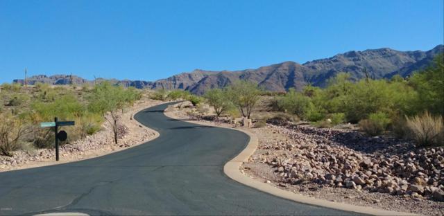 3287 S Petroglyph Trail, Gold Canyon, AZ 85118 (MLS #5823866) :: Occasio Realty