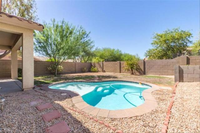 1621 W Kuralt Drive, Anthem, AZ 85086 (MLS #5823887) :: Riddle Realty