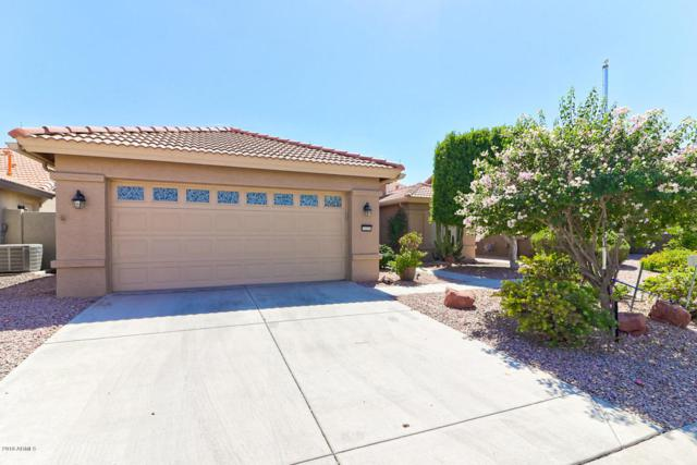 15331 W Mulberry Drive, Goodyear, AZ 85395 (MLS #5823893) :: The W Group