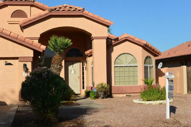 1112 S Brentwood Place, Chandler, AZ 85286 (MLS #5823908) :: The Everest Team at My Home Group