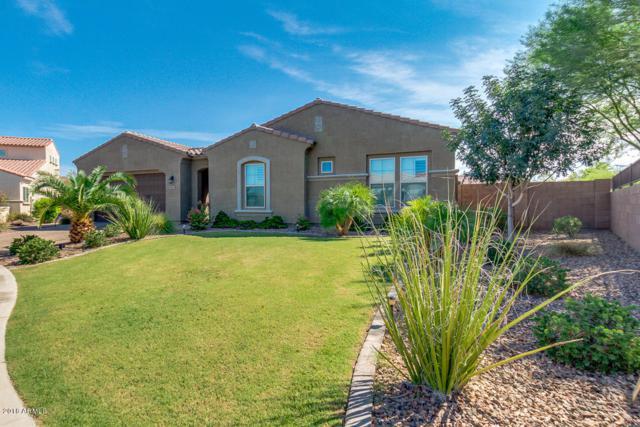 7883 S Debra Drive, Gilbert, AZ 85298 (MLS #5823912) :: The W Group