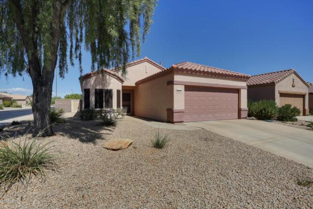 15892 W Arrowhead Drive, Surprise, AZ 85374 (MLS #5823941) :: The Garcia Group @ My Home Group