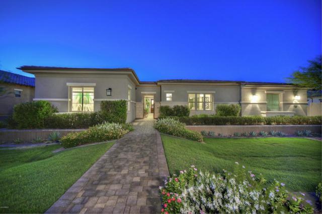 6422 W Fetlock Trail, Phoenix, AZ 85083 (MLS #5823951) :: The Daniel Montez Real Estate Group