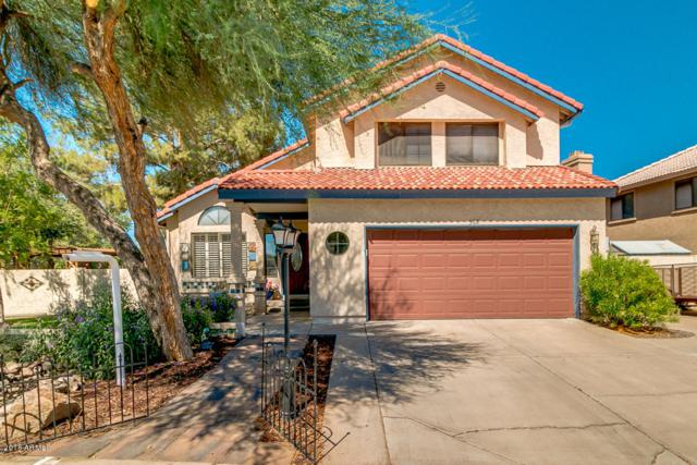 562 W Spur Avenue, Gilbert, AZ 85233 (MLS #5823979) :: The Everest Team at My Home Group