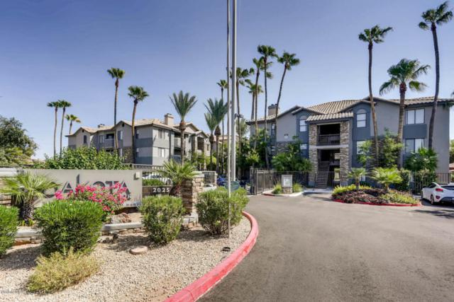 2025 E Campbell Avenue #115, Phoenix, AZ 85016 (MLS #5823986) :: The Wehner Group