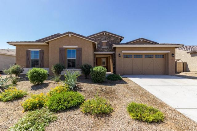 18441 W Raven Road, Goodyear, AZ 85338 (MLS #5823992) :: The AZ Performance Realty Team